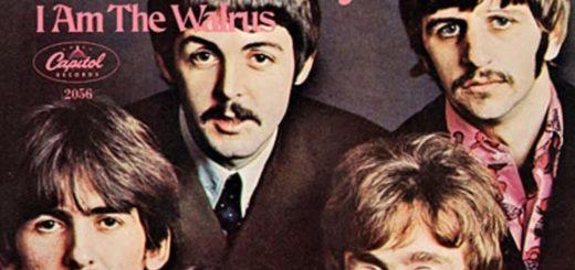 i am the walrus